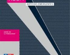 En el catalogo Showroom Artistas Emergentes, Consejo Nacional de la Cultura y las Artes